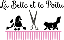 La Belle et le Poilu